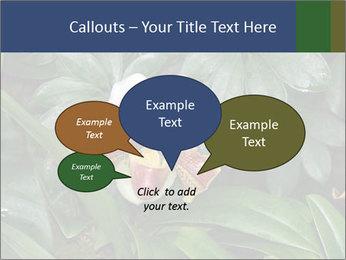 0000080592 PowerPoint Templates - Slide 73