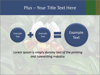 0000080592 PowerPoint Template - Slide 75