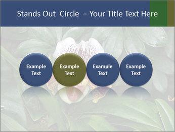 0000080592 PowerPoint Templates - Slide 76