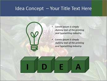 0000080592 PowerPoint Template - Slide 80