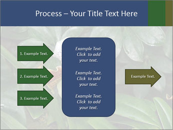 0000080592 PowerPoint Templates - Slide 85