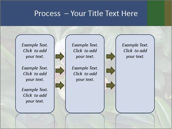 0000080592 PowerPoint Templates - Slide 86