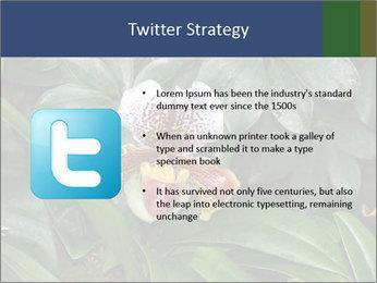 0000080592 PowerPoint Template - Slide 9