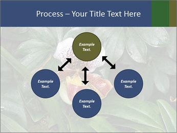 0000080592 PowerPoint Template - Slide 91