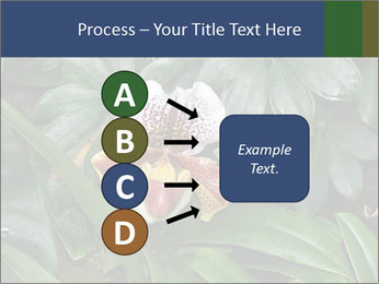 0000080592 PowerPoint Templates - Slide 94