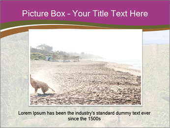 0000080593 PowerPoint Template - Slide 15