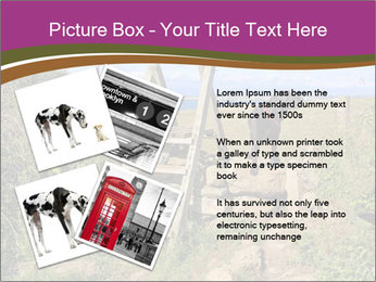 0000080593 PowerPoint Template - Slide 23
