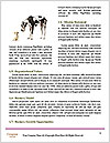 0000080593 Word Templates - Page 4