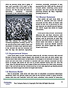 0000080597 Word Templates - Page 4