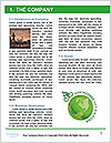 0000080610 Word Template - Page 3