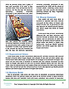 0000080610 Word Template - Page 4
