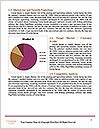 0000080613 Word Template - Page 7