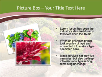 0000080621 PowerPoint Templates - Slide 20