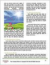 0000080632 Word Templates - Page 4