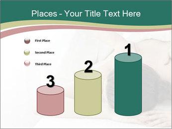 0000080637 PowerPoint Templates - Slide 65
