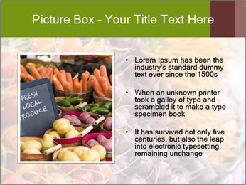 0000080646 PowerPoint Template - Slide 13