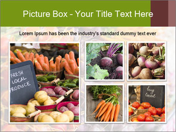 0000080646 PowerPoint Template - Slide 19