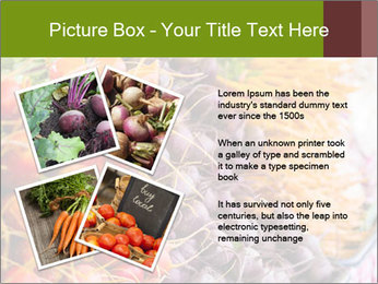 0000080646 PowerPoint Template - Slide 23