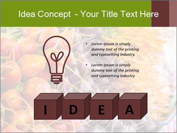 0000080646 PowerPoint Template - Slide 80