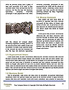 0000080650 Word Template - Page 4