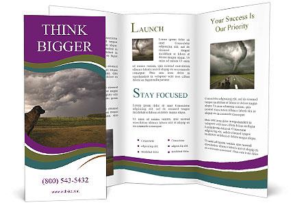 0000080669 Brochure Template