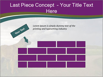0000080669 PowerPoint Template - Slide 46