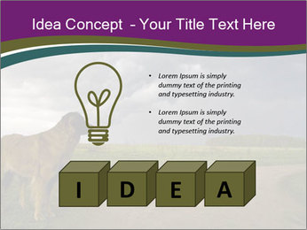0000080669 PowerPoint Template - Slide 80