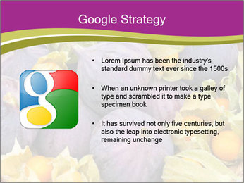0000080672 PowerPoint Templates - Slide 10