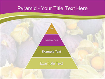 0000080672 PowerPoint Templates - Slide 30