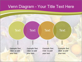 0000080672 PowerPoint Templates - Slide 32