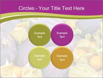 0000080672 PowerPoint Templates - Slide 38