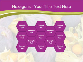 0000080672 PowerPoint Templates - Slide 44