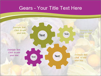 0000080672 PowerPoint Templates - Slide 47