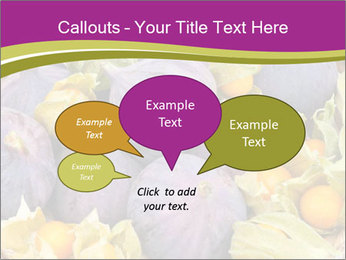 0000080672 PowerPoint Templates - Slide 73