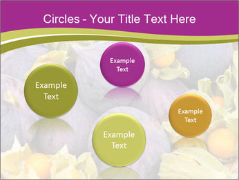 0000080672 PowerPoint Templates - Slide 77