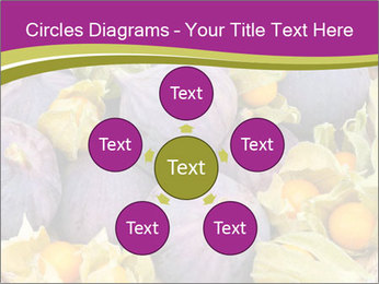 0000080672 PowerPoint Templates - Slide 78