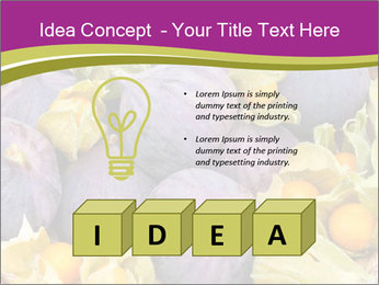 0000080672 PowerPoint Templates - Slide 80
