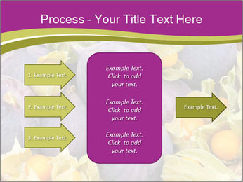 0000080672 PowerPoint Templates - Slide 85
