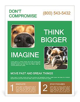 0000080681 Flyer Template