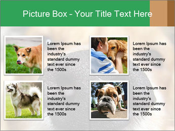 0000080681 PowerPoint Template - Slide 14