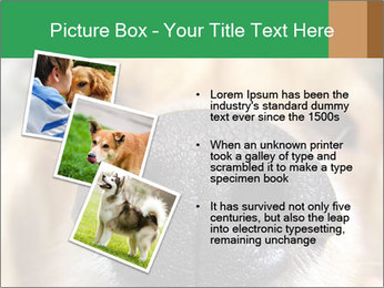 0000080681 PowerPoint Template - Slide 17