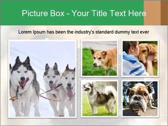 0000080681 PowerPoint Template - Slide 19