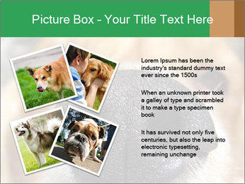 0000080681 PowerPoint Template - Slide 23
