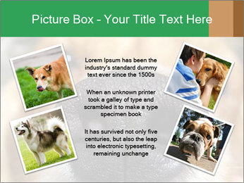 0000080681 PowerPoint Template - Slide 24