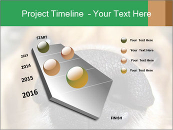 0000080681 PowerPoint Template - Slide 26