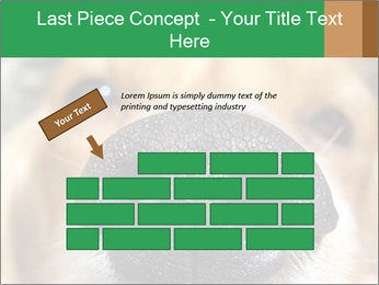 0000080681 PowerPoint Template - Slide 46