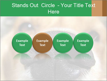 0000080681 PowerPoint Template - Slide 76