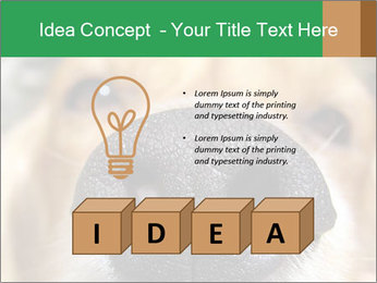 0000080681 PowerPoint Template - Slide 80