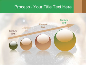 0000080681 PowerPoint Template - Slide 87