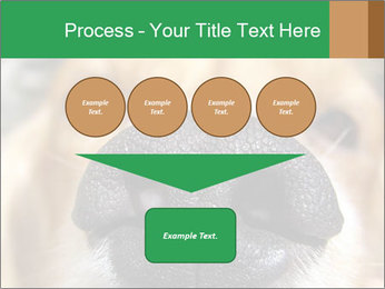 0000080681 PowerPoint Template - Slide 93
